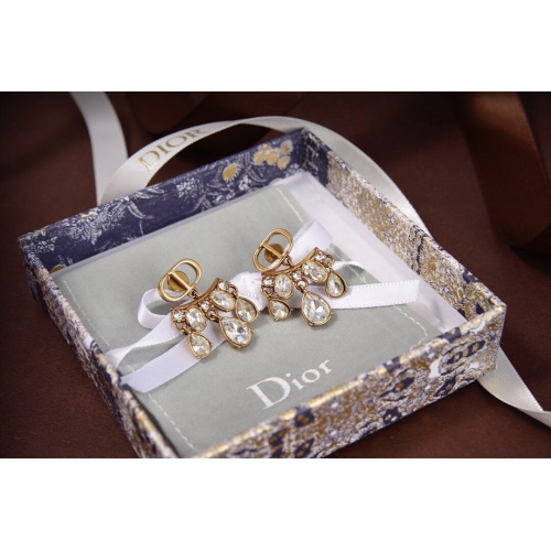 Christian Dior Earrings #815756