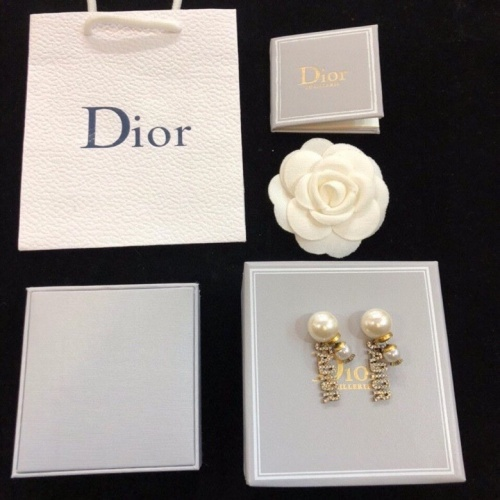 Christian Dior Earrings #816887