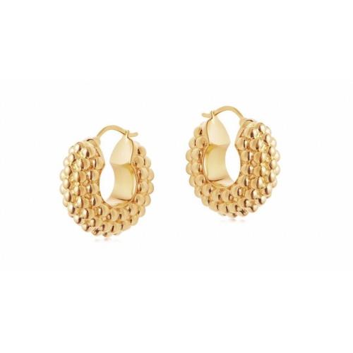 Celine Earrings #817988