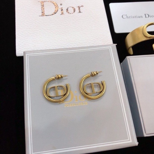 Christian Dior Earrings #819096