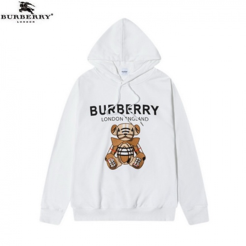 Burberry Hoodies Long Sleeved Hat For Men #819920