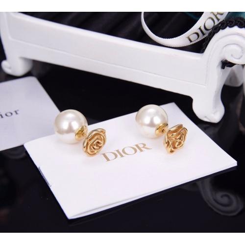 Christian Dior Earrings #820741