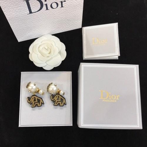 Christian Dior Earrings #822201