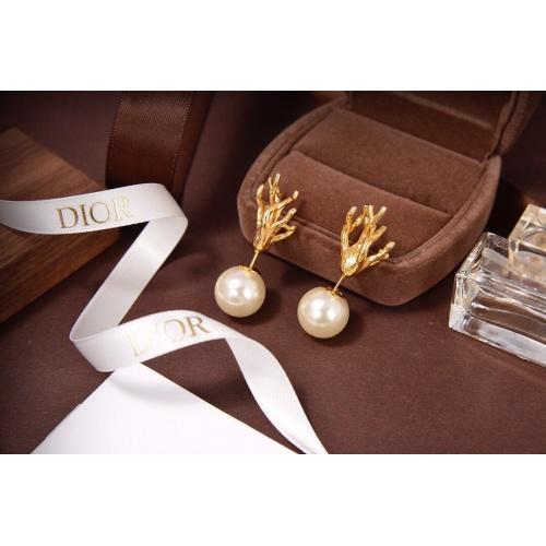 Christian Dior Earrings #822556