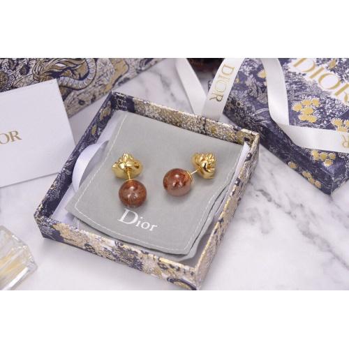 Christian Dior Earrings #823006