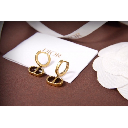 Christian Dior Earrings #823612