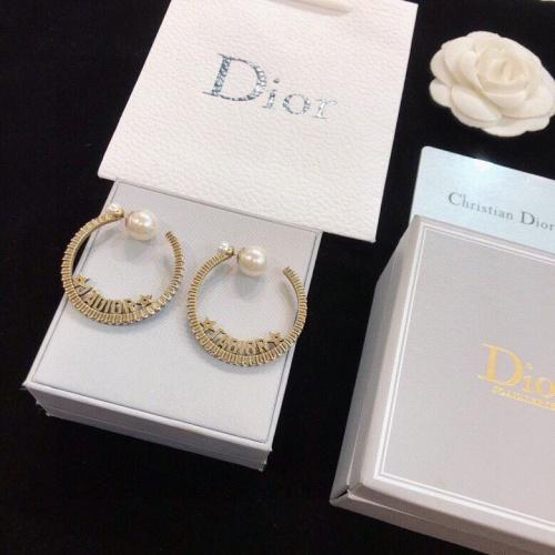 Christian Dior Earrings #824335