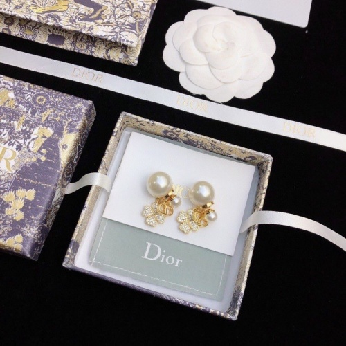 Christian Dior Earrings #824339