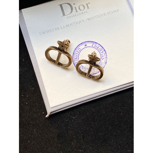 Christian Dior Earrings #825844