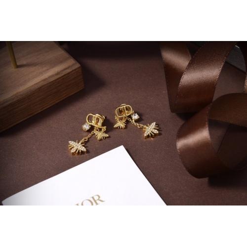 Christian Dior Earrings #826326