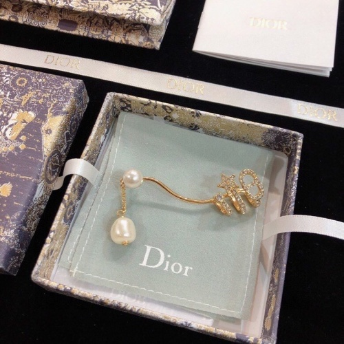 Christian Dior Earrings #827680