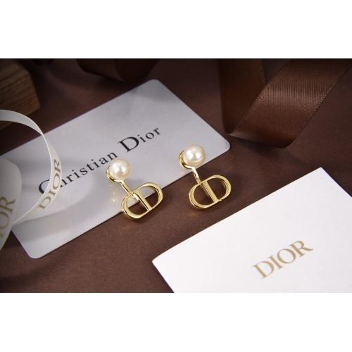 Christian Dior Earrings #828394