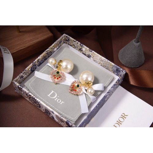 Christian Dior Earrings #828751