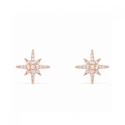 apm Monaco Earrings #828752 $29.00 USD, Wholesale Replica apm Monaco Earrings