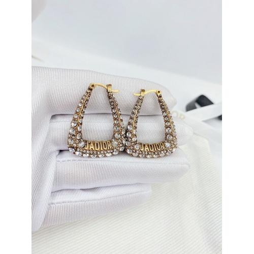 Christian Dior Earrings #829004