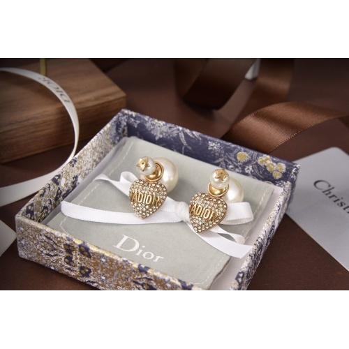 Christian Dior Earrings #829227