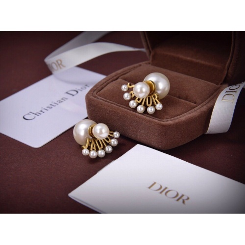 Christian Dior Earrings #829539