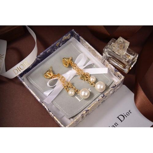 Christian Dior Earrings #829940