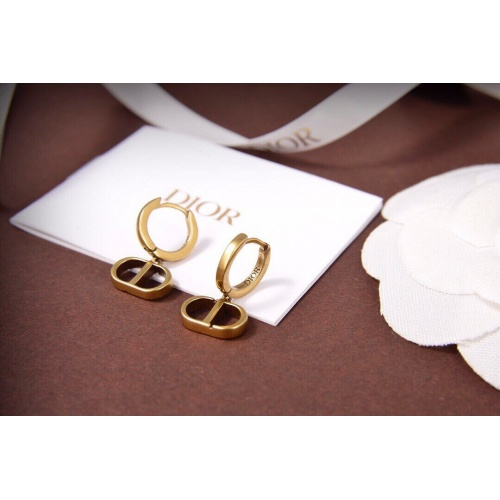 Christian Dior Earrings #830365