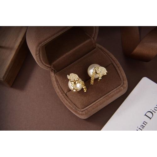 Christian Dior Earrings #830683