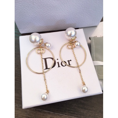 Christian Dior Earrings #830949