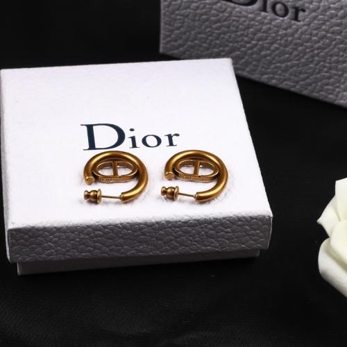 Christian Dior Earrings #831045