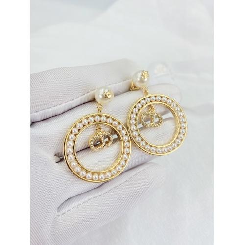 Christian Dior Earrings #833237