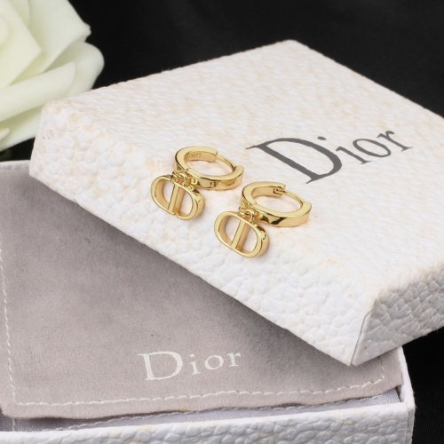 Christian Dior Earrings #833490