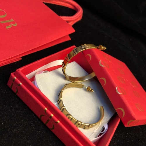 Christian Dior Earrings #833737