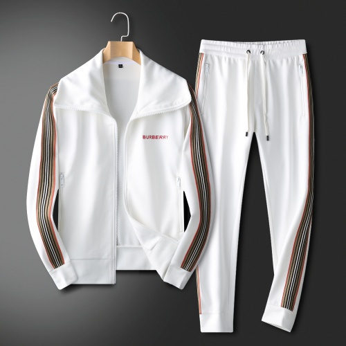 Burberry Tracksuits Long Sleeved For Men #833908