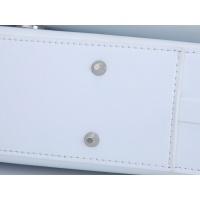 $115.00 USD Christian Dior AAA Handbags For Women #829610