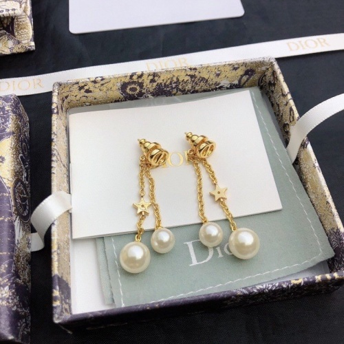 Christian Dior Earrings #835064