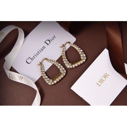 Christian Dior Earrings #835065