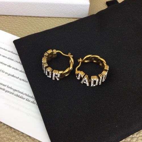 Christian Dior Earrings #835208