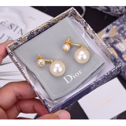 Christian Dior Earrings #835571