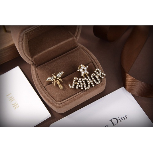 Christian Dior Earrings #835588