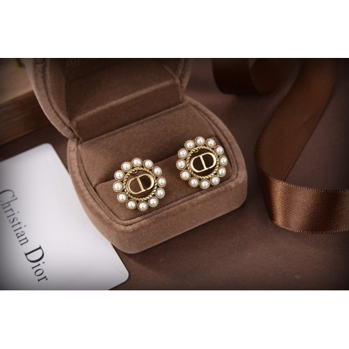 Christian Dior Earrings #835883