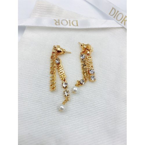 Christian Dior Earrings #835889