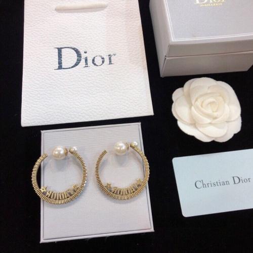 Christian Dior Earrings #836120