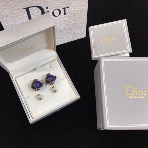 Christian Dior Earrings #836475