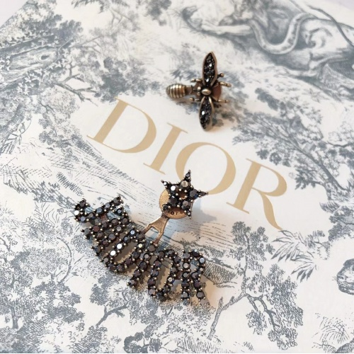 Christian Dior Earrings #836814