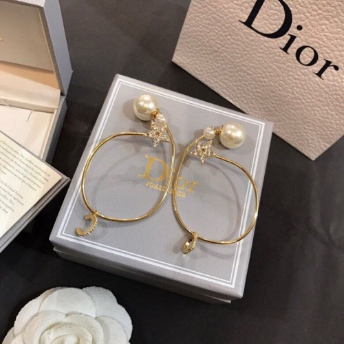 Christian Dior Earrings #837268