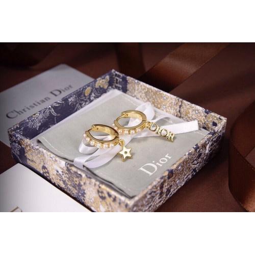Christian Dior Earrings #837601