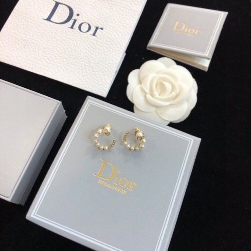 Christian Dior Earrings #838179