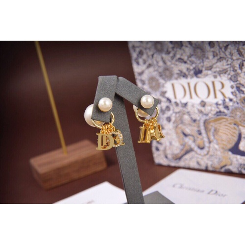 Christian Dior Earrings #838438