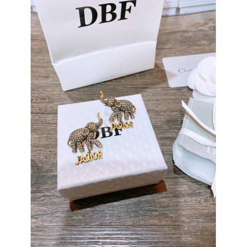 Christian Dior Earrings #839607