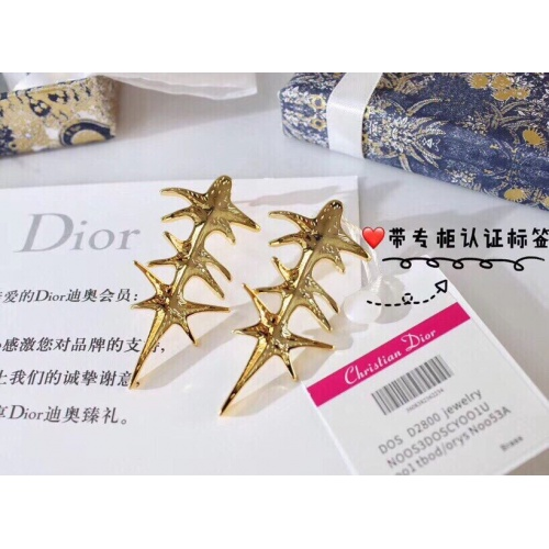 Christian Dior Earrings #839764
