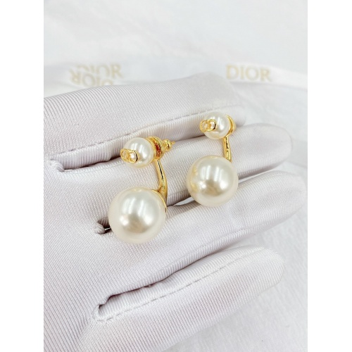 Christian Dior Earrings #840399
