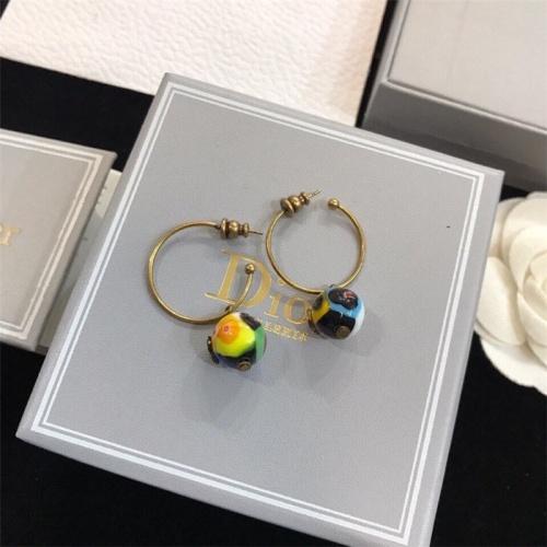 Christian Dior Earrings #840696
