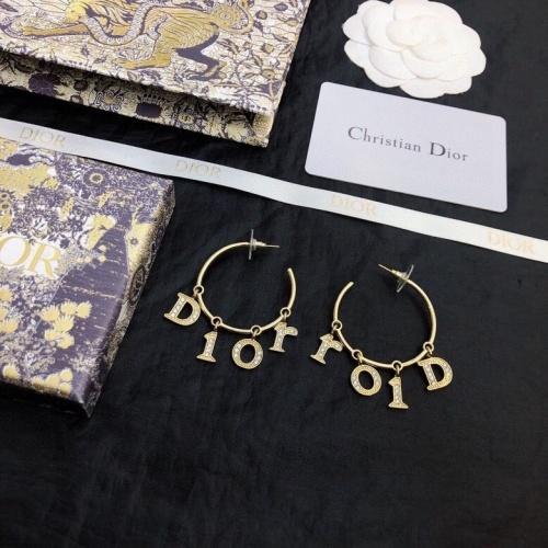 Christian Dior Earrings #841040